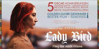 lady_bird
