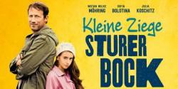 kleine_ziege_sturer_bock