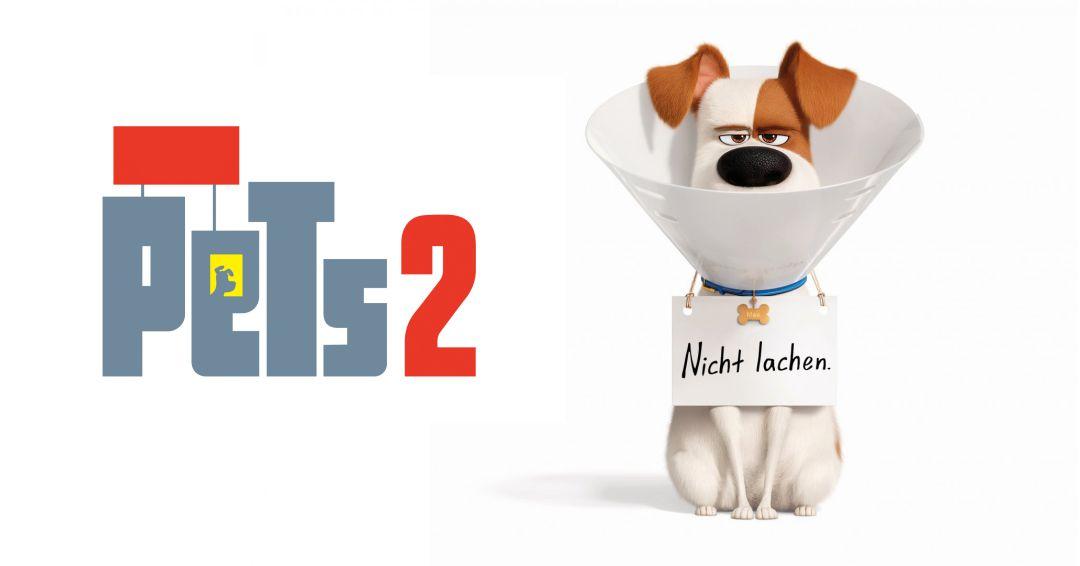 pets_2