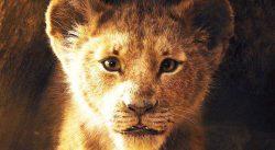 König der Löwen 753_400